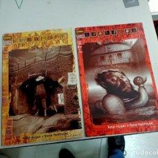 Comics : X THE DREAMING EL CHICO PERDIDO 1 Y 2 (NORMA). Lote 246490140