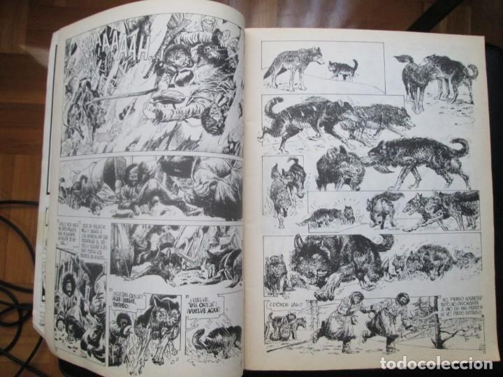 Cómics: CIMOC. Números: 1, 2, 4, 10, 163, 164, 165 y 168 (en total 8 números) - Foto 8 - 254738110