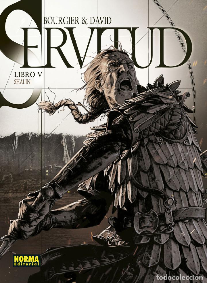 CÓMICS. SERVITUD 5. SHALIN - FABRICE DAVID / ERIC BOURGIER (CARTONÉ) (Tebeos y Comics - Norma - Comic Europeo)