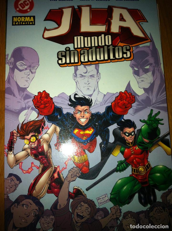 JLA:MUNDO SIN ADULTOS NUMS. 1 (Tebeos y Comics - Norma - Comic USA)