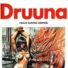Cómics: DRUUNA Nº 2 (PAOLO ELEUTERI SERPIERI) NORMA - CARTONE - IMPECABLE - SUB02M. Lote 276096503