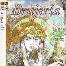 Cómics: BRUJERIA Nº 1 - COL. VERTIGO Nº 88 - NORMA. Lote 277206778