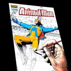 Cómics: DE KIOSCO ANIMAL MAN 272 VERTIGO NORMA EDITORIAL. Lote 288442553