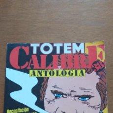 Cómics: COMIC TOTEM CALIBRE 38 ANTOLOGIA EDITORIAL NUEVA FRONTERA, NUMEROS 1,2,3,4 AÑO 1977 BUEN ESTADO. Lote 293362948