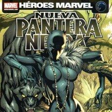 Cómics: HÉROES MARVEL.NUEVA PANTERA NEGRA 01.ESPECIE MORTAL.PANINI.NUEVO.. Lote 57166796