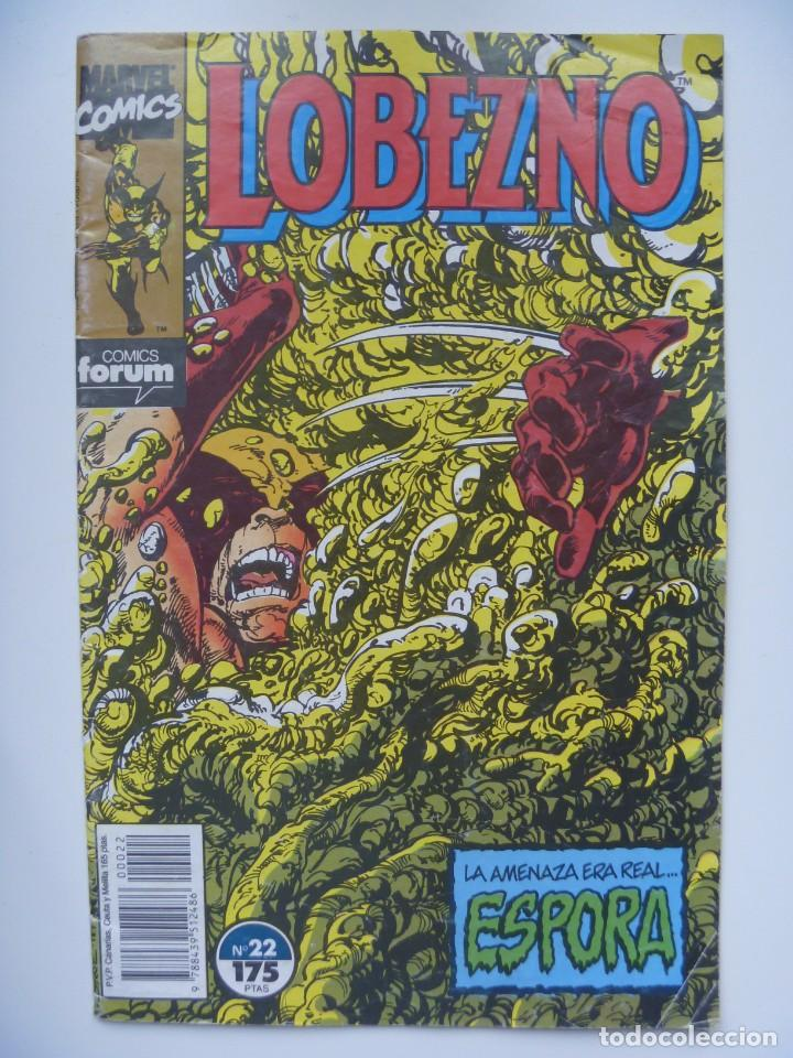 DAREDEVIL NUMERO 22 COMIC FORUM MARVEL COMICS (Tebeos y Comics - Panini - Marvel Comic)