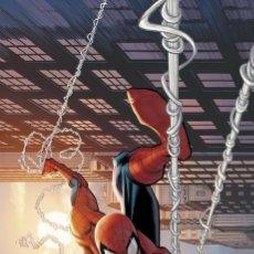 Cómics: ASOMBROSO SPIDERMAN 12 - PANINI / MARVEL GRAPA / NOVEDAD ENERO. Lote 184658722