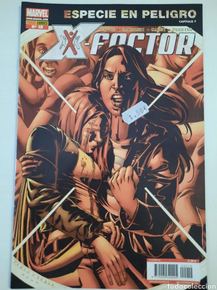 X-FACTOR 19 - ESPECIE EN PELIGRO - GRAPA MARVEL PANINI - VER FOTOS (Tebeos y Comics - Panini - Marvel Comic)