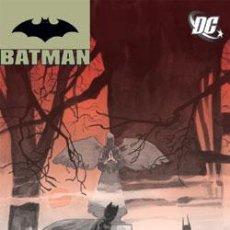 Cómics: BATMAN SERIE REGULAR Nº 1 DE ADERSEN GABRYCH & PETER WOODS PLANETA DE AGOSTINI DC COMICS. Lote 38672203