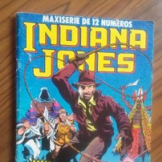 Comics : INDIANA JONES 1. MAXISERIE DE 12 NÚMEROS. BUEN ESTADO. RÚSTICA. GRAPA.. Lote 176030727