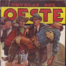 Comics: NOVELA COLECCION NOVELAS DEL OESTE Nº 41 EDICIONES CLIPER . Lote 44355984