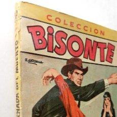 Cómics: COLECCION BISONTE EXTRA ILUSTRADA Nº 247 - KEITH LUGER - CLAUDIO TINOCO DIBUJOS ETC. Lote 149394182