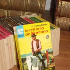 Cómics: MINI LIBROS BRUGUERA SERIE OESTE Nº 389 TERRITORIO DE MONTANA MARCIAL LAFUENTE ESTEFANIA 1965. Lote 255658575