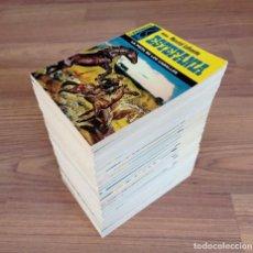 Cómics: EDICIONES BRAINS OESTE COLECCION HORCA LOTE 31 NOVELAS-BOLSILIBROS-PULP. Lote 284494563