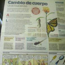 Cómics: NIÑOS. SUPLEMENTO INFANTIL DEL DIARIO PÚBLICO. CUATRO UNIDADES: MAYO 2008.. Lote 37947179