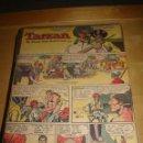 Cómics: TARZAN SUNDAY PAGE BY JOHN CELARDO AND RUSS MANNING – 550 EJEMPLARES. Lote 40532049