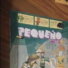 Comics : PEQUEÑO PAIS 669. SEPTIEMBRE-94. BUEN ESTADO. PORTADA EL GRAN FALSINNI. Lote 53568078