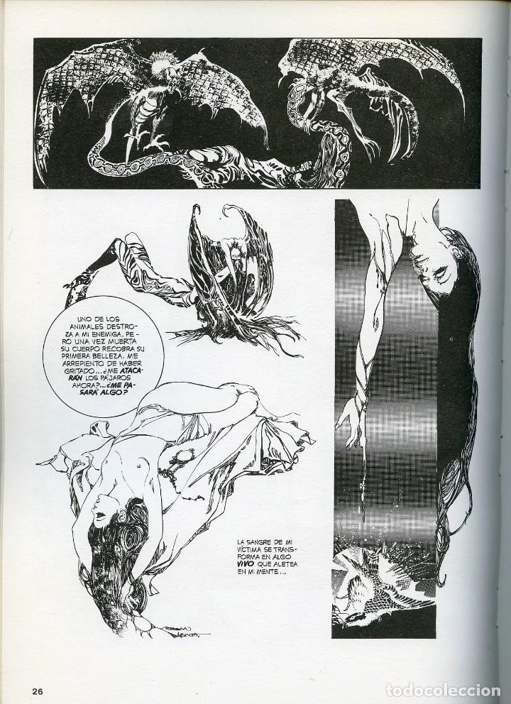 Cómics: ESTEBAN MAROTO. CUANDO EL COMIC ES ARTE. TOUTAIN 1978. EN ESPAÑOL E iNGLÉS - Foto 2 - 99552519