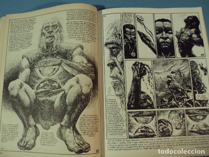 Cómics: Comics Zona 84 El cómic de la Fantasía y la Ciencia Ficción, 1986, 82 pag. - Foto 4 - 101718219