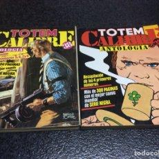Cómics: TOTEM CALIBRE 38 COMPLETA EN 2 TOMOS -ED. NUEVA FRONTERA. Lote 116228583
