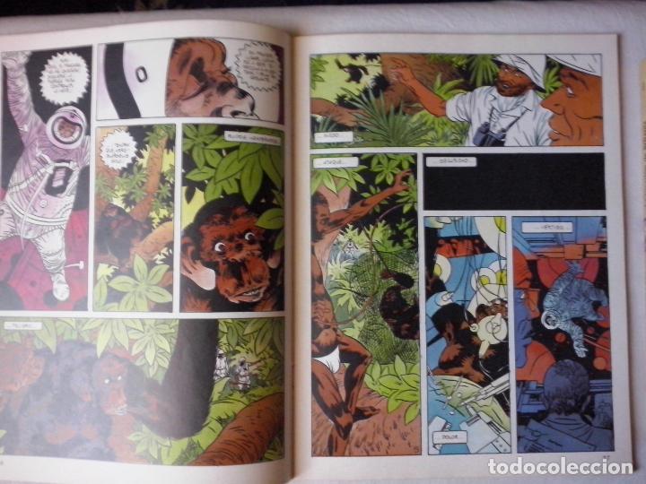 Cómics: COMICS: COMIX INTERNACIONAL Nº 31 (ABLN) - Foto 2 - 146043506