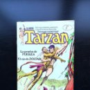 Cómics: EL NUEVO TARZAN, VOL. 1 Nº 6. EDGAR RICE. TOUTAIN EDITOR, 1979.. Lote 159796954