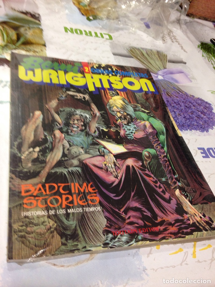 BERNI WRIGHTSON 2 BADTIME STORIES TOUTAIN (Tebeos y Comics - Toutain - Álbumes)