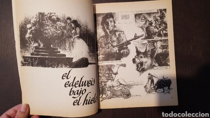 Cómics: Comic - LAS CRONICAS DEL SIN NOMBRE - LUIS GARCIA - VICTOR MORA (TOUTAIN) - Foto 9 - 213895070