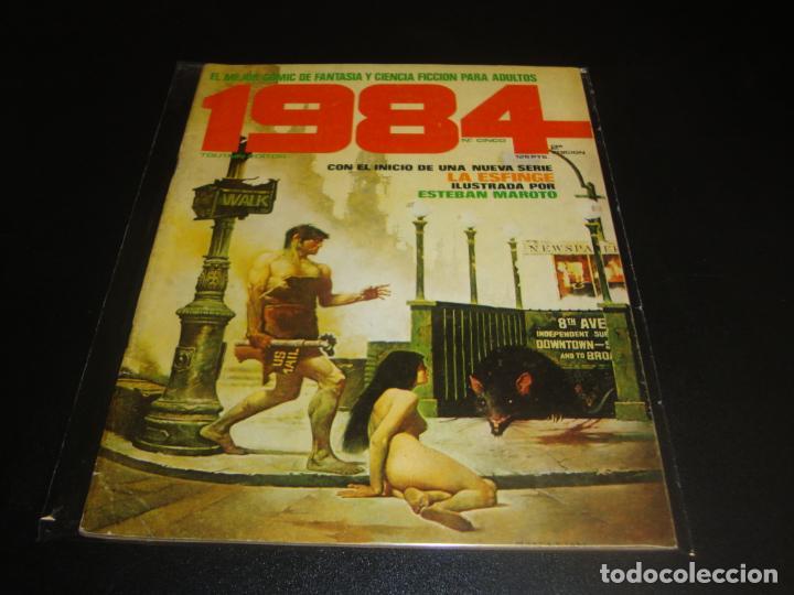 1984 NUMERO CINCO SEGUNDA EDICION (Tebeos y Comics - Toutain - Comix Internacional)