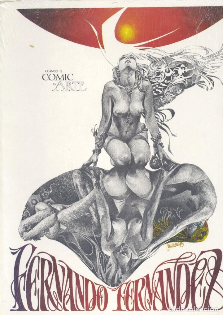 FERNANDO FERNÁNDEZ. CUANDO EL CÓMIC ES ARTE. TOUTAIN (Tebeos y Comics - Toutain - Álbumes)