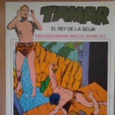 Fumetti: TAMAR, EL REY DE LA SELVA Nº 15. Lote 31727183