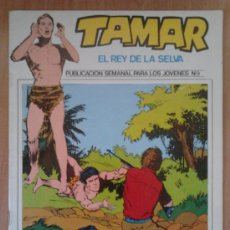 Fumetti: TAMAR, EL REY DE LA SELVA Nº 9. Lote 31727259