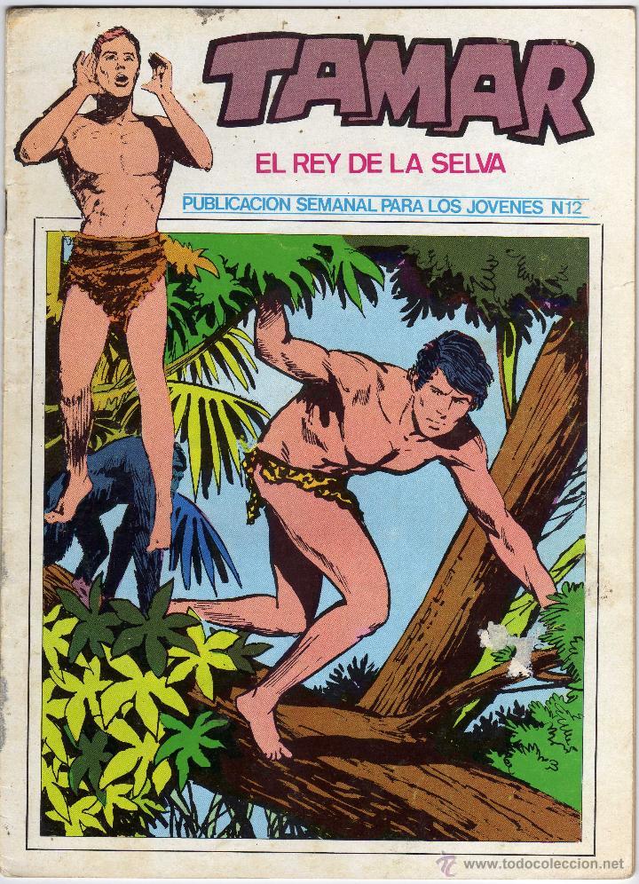TAMAR - EL REY DE LA SELVA - NUM. 12 (Tebeos y Comics - Ursus)