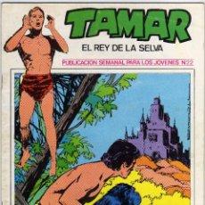 Cómics: TAMAR - EL REY DE LA SELVA - NÚM. 22. Lote 50561350