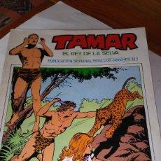 Cómics: * TAMAR * URSUS EDICIONES 1973 * LOTE DE 30 Nº IMPECABLES * INCLUYE POSTER *. Lote 205567301