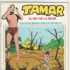 Comics: URSUS. TAMAR EL REY DE LA SELVA. 11.. Lote 271247903