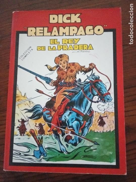 DICK RELAMPAGO,- EL REY DE LA PRADERA, G. IRANZO, COL. COMPLETA, URSU 1982. (Tebeos y Comics - Ursus)