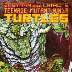Cómics: TEENAGE MUTANT NINJA TURTLES VOL.1 # 45 (MIRAGE STUDIOS,1992). Lote 183973283