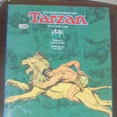 Cómics: TARZAN IN COLOR. EDGAR RICE BURROUGHS'. HOGARTH. VOLUMEN 4. (1934 - 1935). FLYING BUTTRESS.. Lote 87119716
