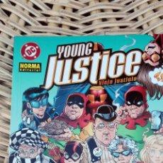 Cómics: YOUNG JUSTICE. VIEJA JUSTICIA. NORMA EDITORIAL SIN USO. W. Lote 101987051