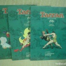 Cómics: TARZAN IN COLOR - VOLUME 1-2-3 - HAL FOSTER - (EN INGLÉS). Lote 111674119