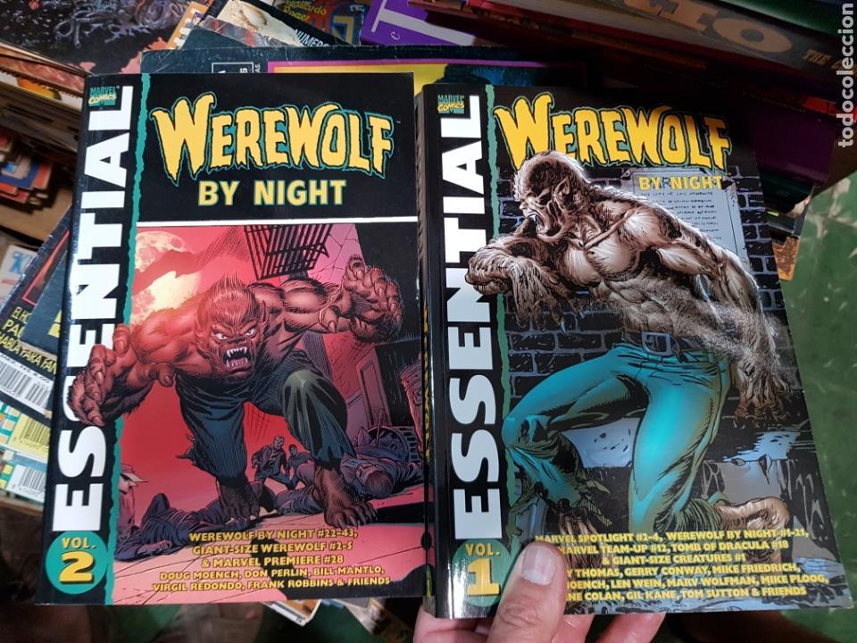 US MARVEL: ESSENTIAL WEREWOLF BY NIGHT VOLUMENES 1 Y 2 COMPLETA EL HOMBRE LOBO DE VERTICE EN INGLES (Tebeos y Comics - Comics Lengua Extranjera - Comics USA)