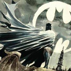Cómics: BATMAN BY PAUL DINI OMNIBUS - DC 2020 / HARDCOVER. Lote 222104710