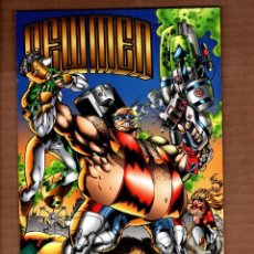 Cómics: NEWMEN 2 - IMAGE 1994 VFN/NM. Lote 244662490