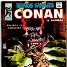 Cómics: RELATOS SALVAJES Nº 41, CONAN, NEAL ADAMS,MIKE ZECK,GLEN LORD,,ROY THOMAS, AÑO 1977, 84 PGS. Lote 14348138