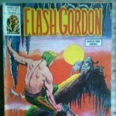 Cómics: FLASH GORDON- V-2- Nº 12 -EL ESTAFADOR-BRILLANTE-DAN BARRY- 1979-CASI BUENO-MUY ESCASO-LEAN-3183. Lote 210731545