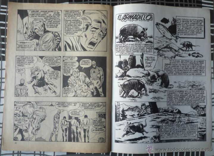 Cómics: ESPECIAL SUPER HEROES Nº 14 - SPIDERMAN Y LA ANTORCHA HUMANA - Foto 5 - 48854489