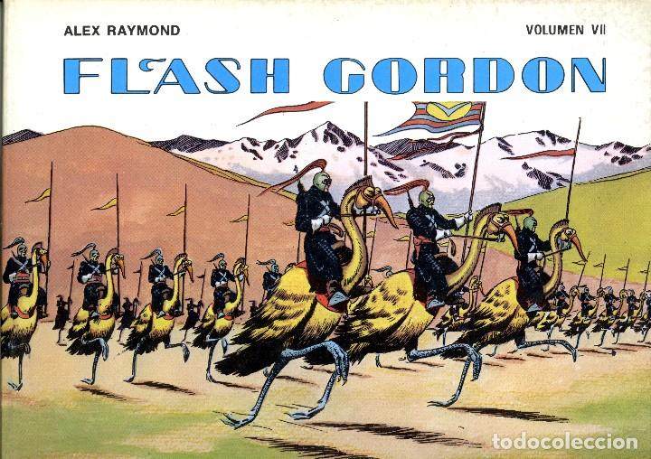 FLASH GORDON. . VOLUMEN VII. ALEX RAYMOND. EDICIONES B.O. (RF.MA) (Tebeos y Comics - Vértice - Flash Gordon)