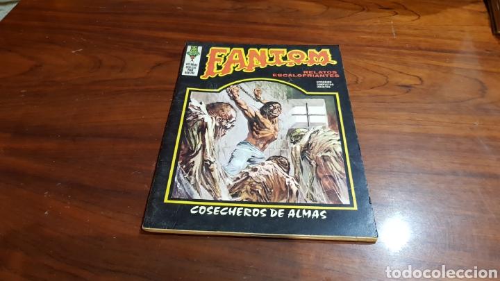FANTOM 7 BUEN ESTADO VERTICE (Tebeos y Comics - Vértice - Terror)
