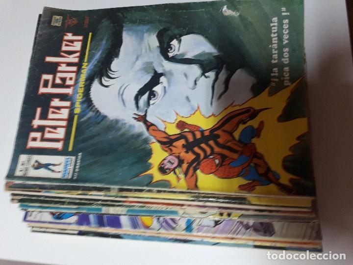PETER PARKER VERTICE VOL.1. (Tebeos y Comics - Vértice - V.1)